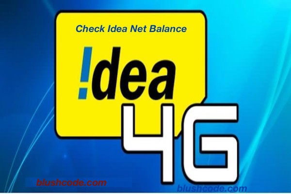 check idea net balance